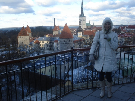 View fromToompea