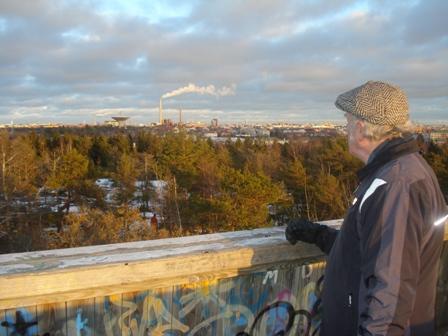 Lauttasaari lookouttower