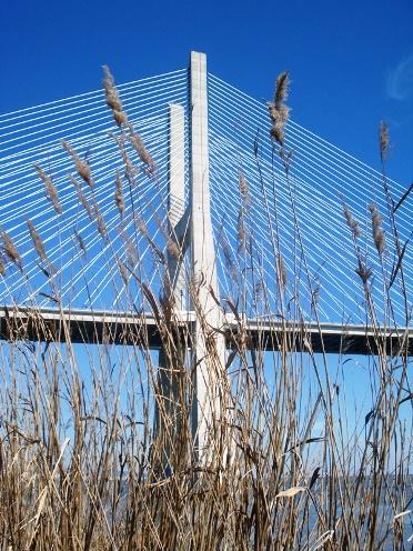 Ponte VascodeGama
