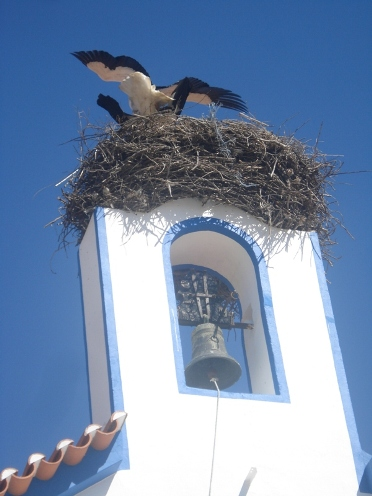 Storks inTro�a